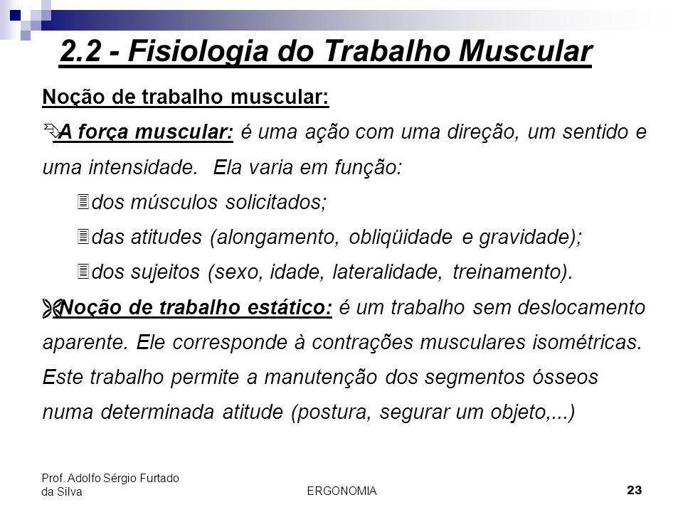 ERGONOMIA 23 Prof. Adolfo Sérgio Furtado da Silva Noção de trabalho muscular: Ê A força muscular: é uma ação com uma direção, um sentido e uma intensi