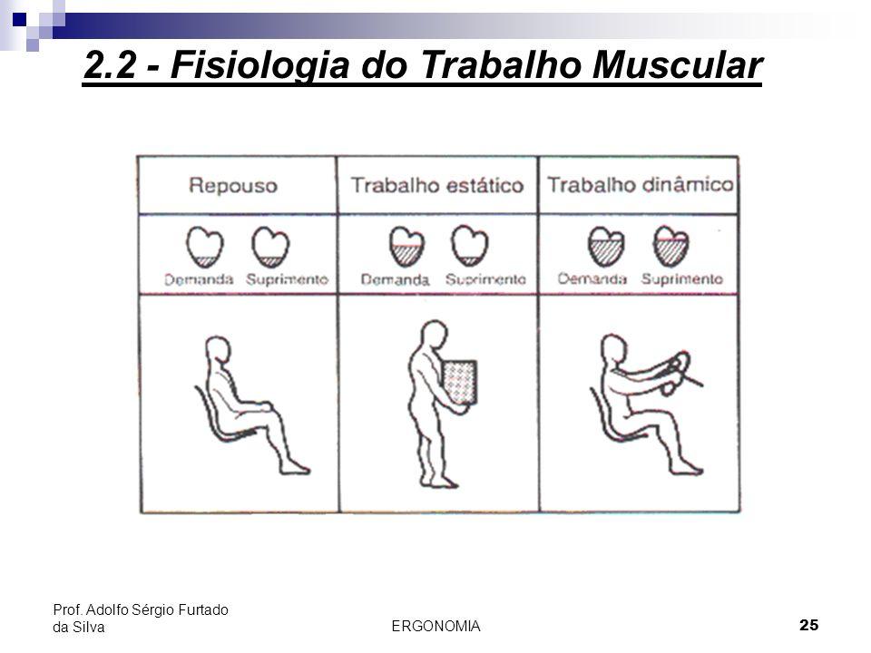 ERGONOMIA 25 Prof. Adolfo Sérgio Furtado da Silva 2.2 - Fisiologia do Trabalho Muscular
