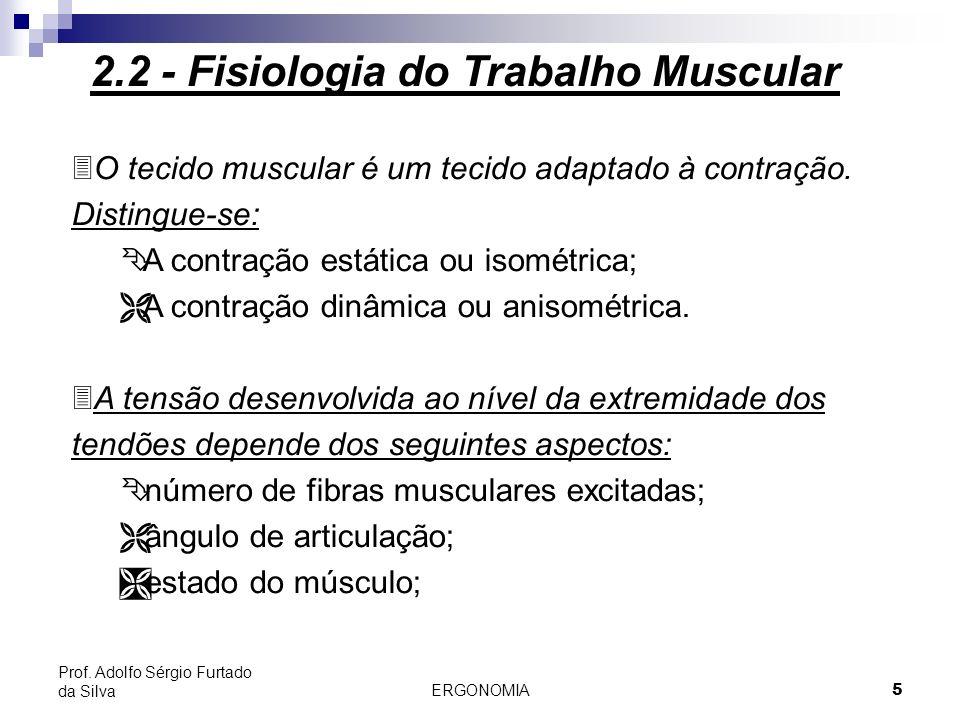 ERGONOMIA 5 Prof. Adolfo Sérgio Furtado da Silva 3O tecido muscular é um tecido adaptado à contração. Distingue-se: Ê A contração estática ou isométri