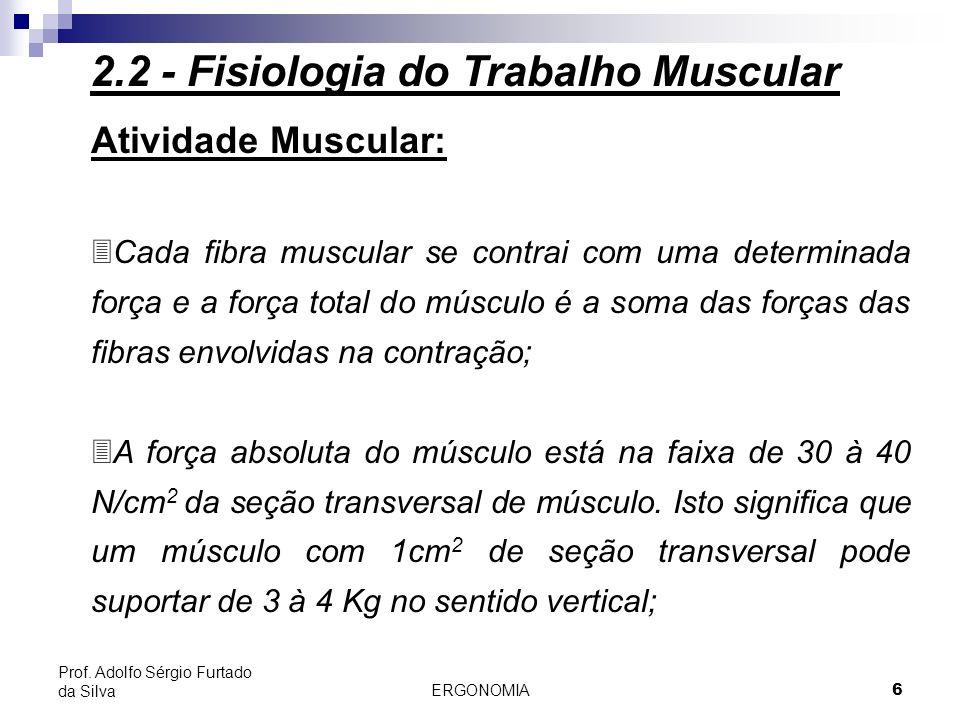ERGONOMIA 6 Prof. Adolfo Sérgio Furtado da Silva Atividade Muscular: 3Cada fibra muscular se contrai com uma determinada força e a força total do músc