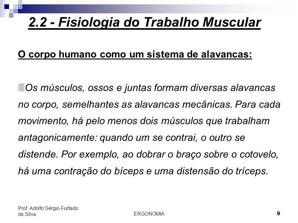 ERGONOMIA 9 Prof. Adolfo Sérgio Furtado da Silva O corpo humano como um sistema de alavancas: 3Os músculos, ossos e juntas formam diversas alavancas n