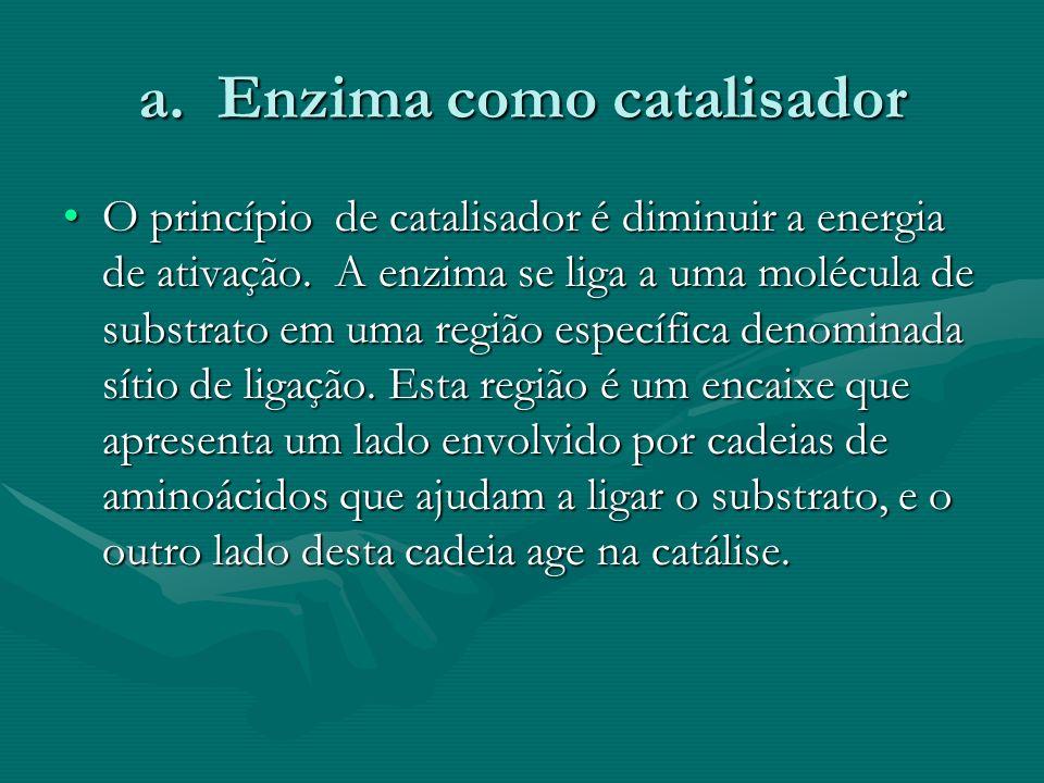 a. Enzima como catalisador O princípio de catalisador é diminuir a energia de ativação. A enzima se liga a uma molécula de substrato em uma região esp