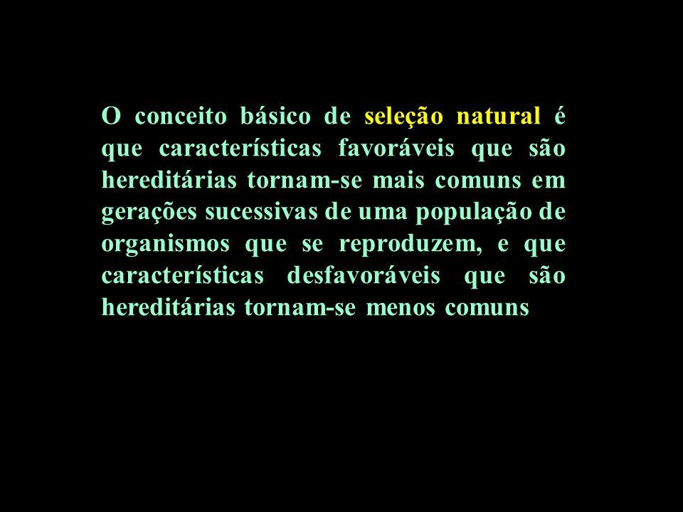 O conceito básico de seleção natural é que características favoráveis que são hereditárias tornam-se mais comuns em gerações sucessivas de uma populaç