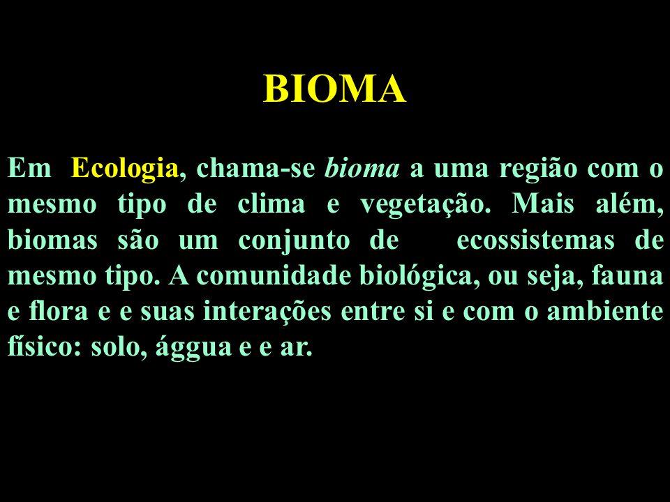 BIOMA Em Ecologia, chama-se bioma a uma região com o mesmo tipo de clima e vegetação. Mais além, biomas são um conjunto de ecossistemas de mesmo tipo.