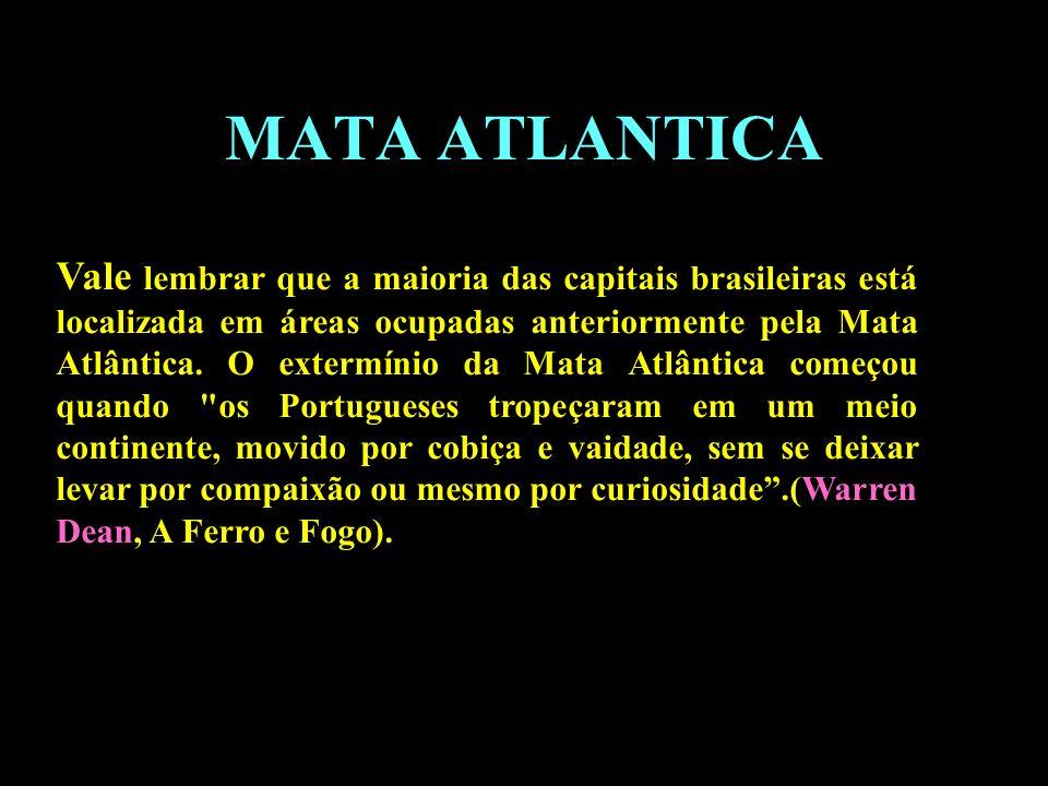 Divisão em 02 continentes MATA ATLANTICA Vale lembrar que a maioria das capitais brasileiras está localizada em áreas ocupadas anteriormente pela Mata