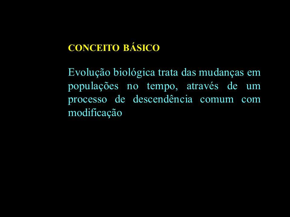 O HOMEM É ANTES DE TUDO, UM SER ECOLÓGICO, ESTEIO BÁSICO DOS ECOSSISTEMAS, PODENTO EXTERMINAR E CRIAR UM NOVO SISTEMA ECOLÓGICO. 17/03/2008 CONCEITO B