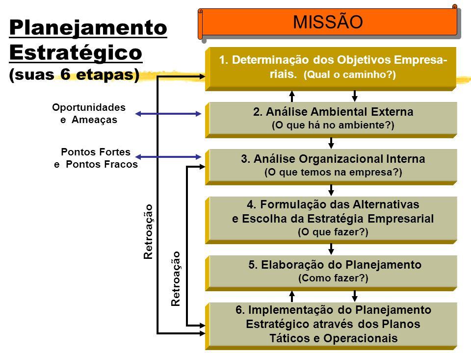 Planejamento Estratégico (suas 6 etapas) 1. Determinação dos Objetivos Empresa- riais. (Qual o caminho?) 2. Análise Ambiental Externa (O que há no amb