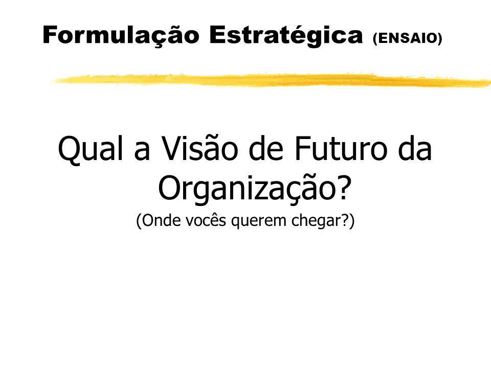 Formulação Estratégica (ENSAIO) Qual a Visão de Futuro da Organização? (Onde vocês querem chegar?)