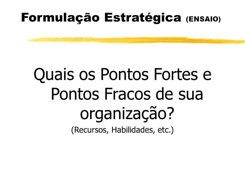 Formulação Estratégica (ENSAIO) Quais os Pontos Fortes e Pontos Fracos de sua organização? (Recursos, Habilidades, etc.)