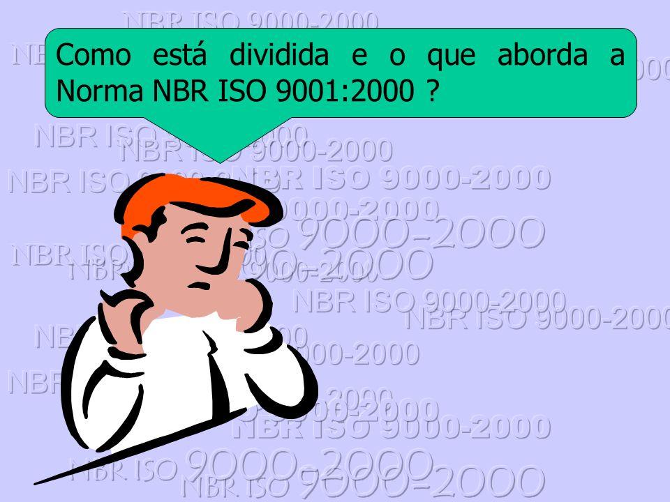 Como está dividida e o que aborda a Norma NBR ISO 9001:2000 ?