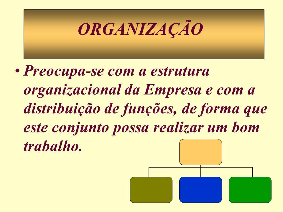 Preocupa-se com a estrutura organizacional da Empresa e com a distribuição de funções, de forma que este conjunto possa realizar um bom trabalho. ORGA