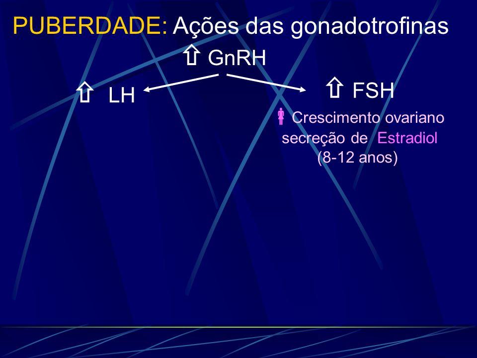 LH GnRH PUBERDADE: Ações das gonadotrofinas FSH Crescimento ovariano secreção de Estradiol (8-12 anos)