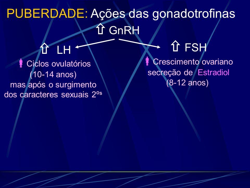 LH GnRH PUBERDADE: Ações das gonadotrofinas FSH Ciclos ovulatórios (10-14 anos) mas após o surgimento dos caracteres sexuais 2º s Crescimento ovariano