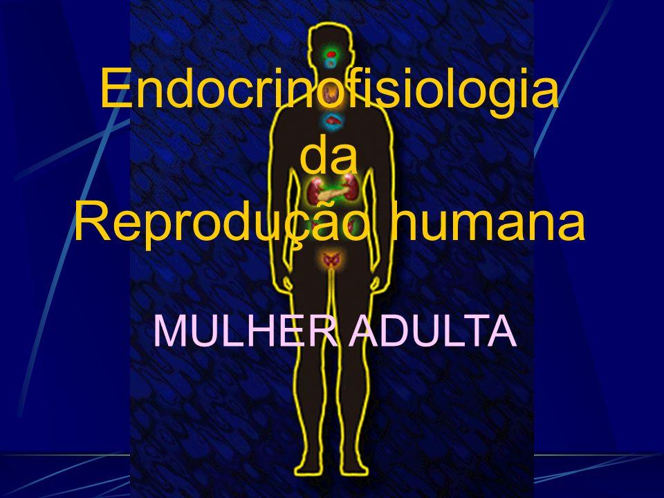 Endocrinofisiologia da Reprodução humana MULHER ADULTA