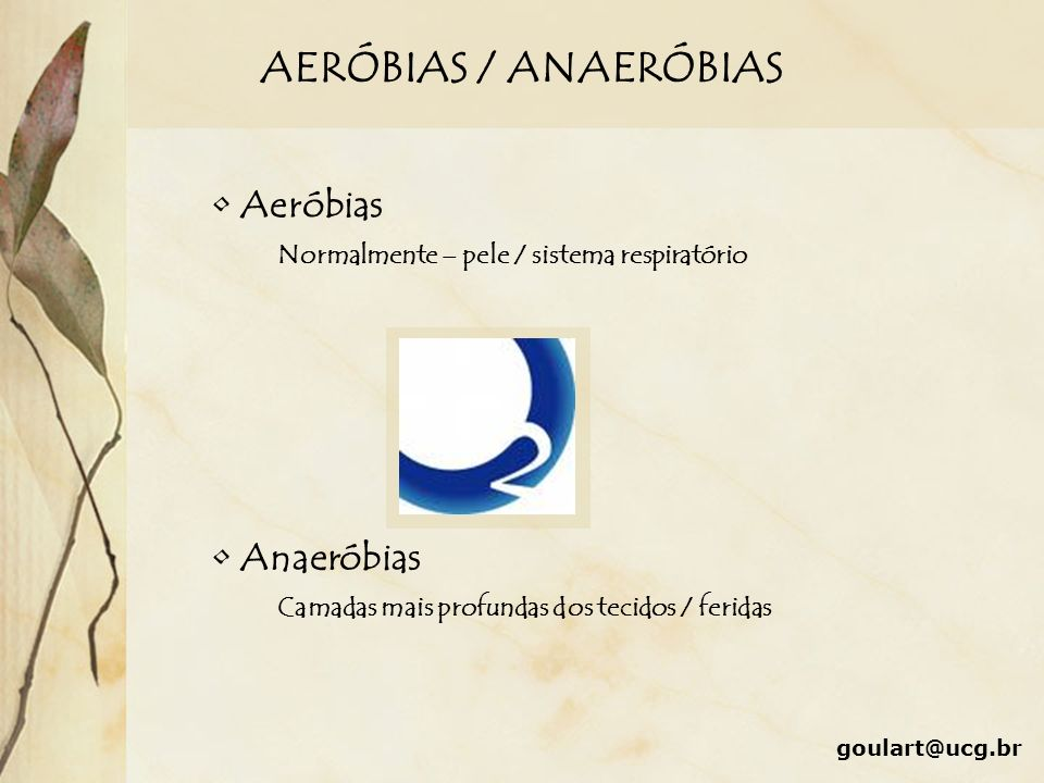 AERÓBIAS / ANAERÓBIAS goulart@ucg.br Aeróbias Normalmente – pele / sistema respiratório Anaeróbias Camadas mais profundas dos tecidos / feridas