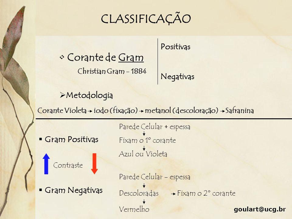 CLASSIFICAÇÃO Corante de Gram Christian Gram - 1884 Metodologia Corante Violeta iodo (fixação) metanol (descoloração) Safranina Negativas Positivas Gr