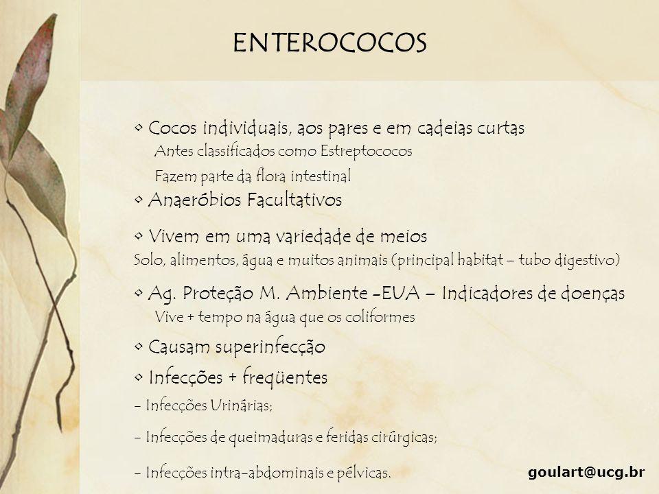 ENTEROCOCOS Cocos individuais, aos pares e em cadeias curtas Antes classificados como Estreptococos Anaeróbios Facultativos Vivem em uma variedade de