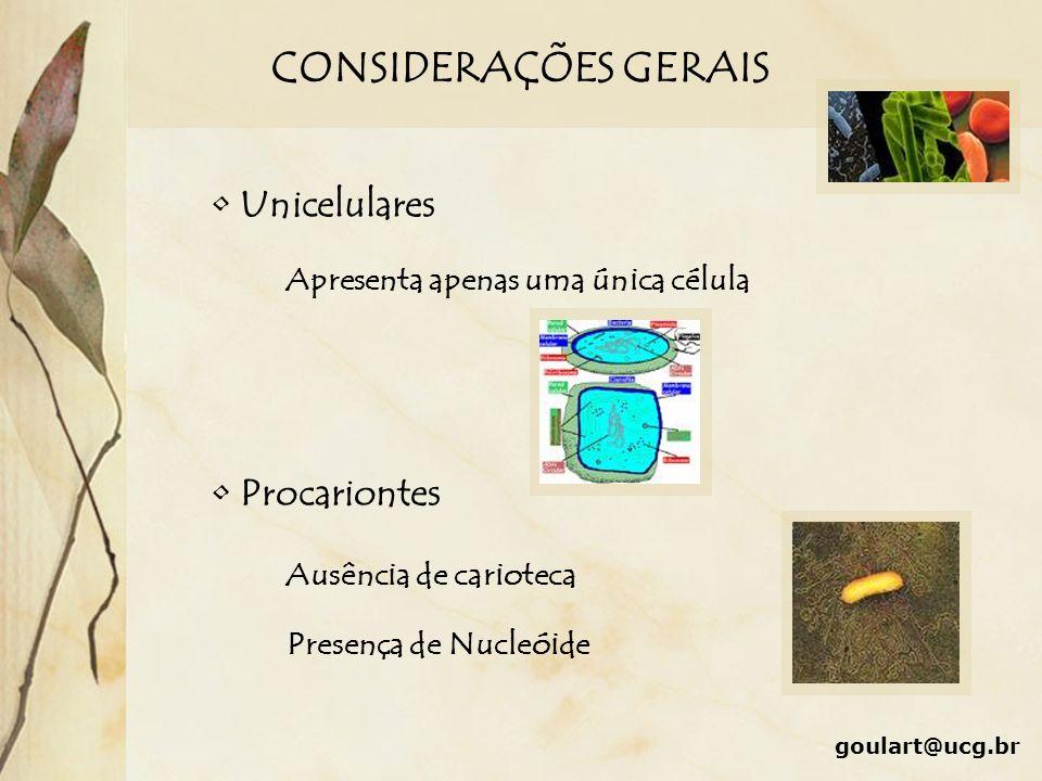 CONSIDERAÇÕES GERAIS goulart@ucg.br Unicelulares Procariontes Apresenta apenas uma única célula Ausência de carioteca Presença de Nucleóide