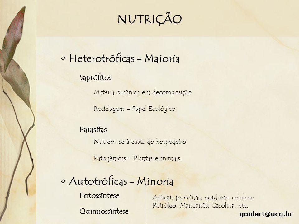 NUTRIÇÃO Heterotróficas - Maioria Autotróficas - Minoria Fotossíntese Quimiossíntese Açúcar, proteínas, gorduras, celulose Petróleo, Manganês, Gasolin
