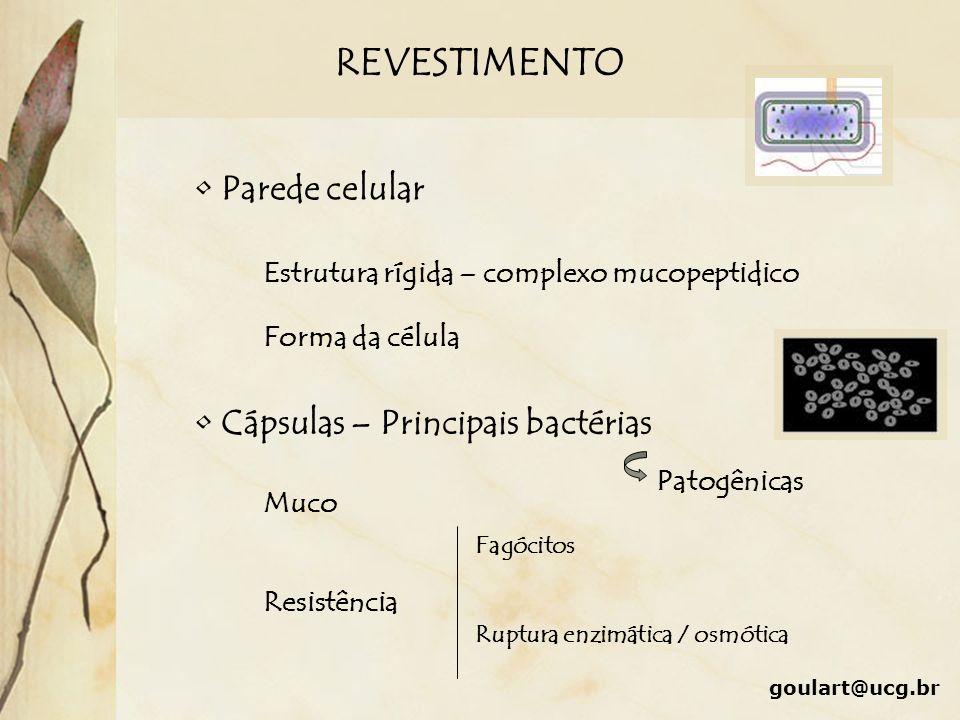 REVESTIMENTO goulart@ucg.br Parede celular Estrutura rígida – complexo mucopeptidico Forma da célula Cápsulas – Principais bactérias Patogênicas Muco