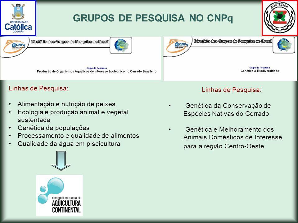Modalidades de IC na UCG PIBIC-CNPq (Programa Institucional de Bolsas de Iniciação Científica) BIC -PROPE/UCG (Programa Interno de Bolsas de Iniciação Científica) BIC-OVG/SECTEC/UCG (Programa de Bolsas de Iniciação Científica OVG - SECTEC-PROPE/UCG ) VOLUNTÁRIOS-UCG (Programa Institucional Voluntários de Pesquisa- PROPE/UCG)