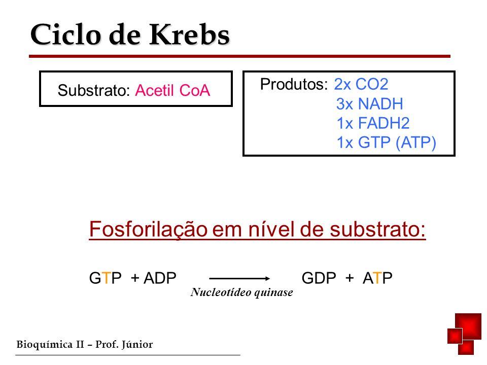 Bioquímica II – Prof. Júnior Ciclo de Krebs Ciclo de Krebs Substrato: Acetil CoA Produtos: 2x CO2 3x NADH 1x FADH2 1x GTP (ATP) Fosforilação em nível