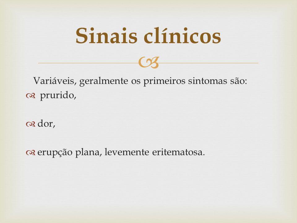 Variáveis, geralmente os primeiros sintomas são: prurido, dor, erupção plana, levemente eritematosa. Sinais clínicos