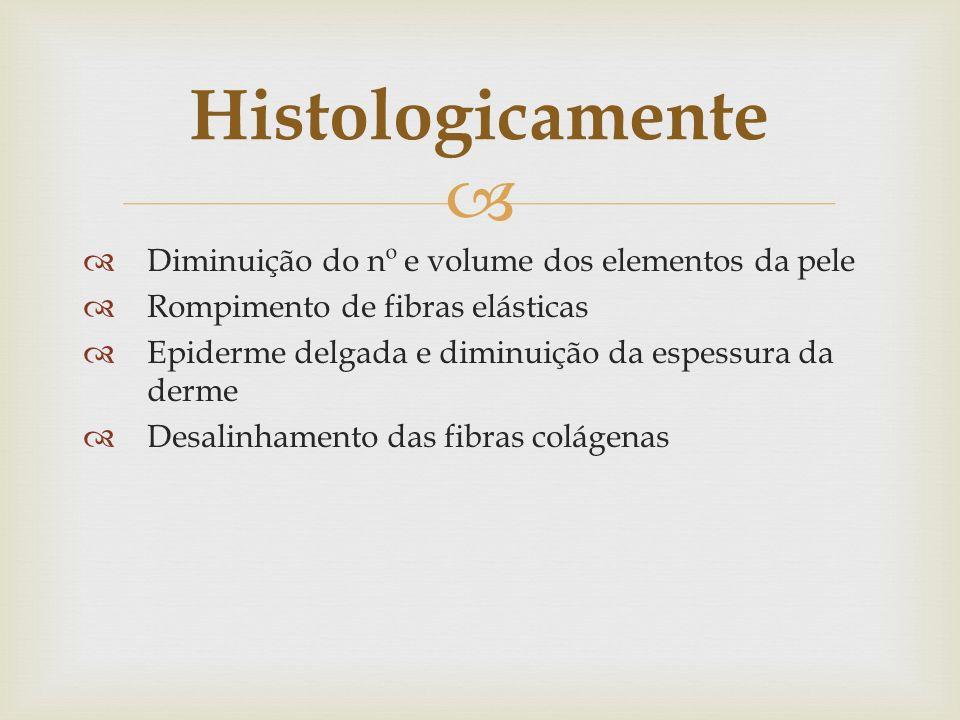 Diminuição do nº e volume dos elementos da pele Rompimento de fibras elásticas Epiderme delgada e diminuição da espessura da derme Desalinhamento das