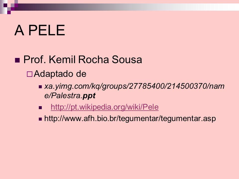 A PELE Prof. Kemil Rocha Sousa Adaptado de xa.yimg.com/kq/groups/27785400/214500370/nam e/Palestra.ppt http://pt.wikipedia.org/wiki/Pele http://www.af