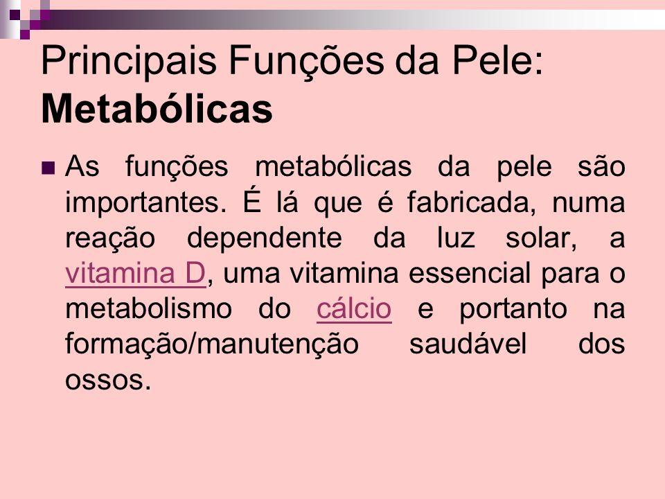 Principais Funções da Pele: Metabólicas As funções metabólicas da pele são importantes. É lá que é fabricada, numa reação dependente da luz solar, a v
