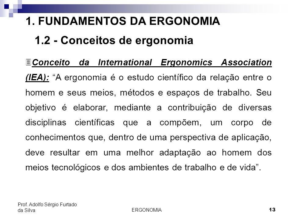 ERGONOMIA 13 Prof. Adolfo Sérgio Furtado da Silva 1. FUNDAMENTOS DA ERGONOMIA 1.2 - Conceitos de ergonomia 3Conceito da International Ergonomics Assoc