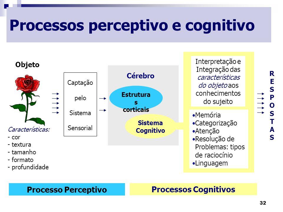 32 Processos perceptivo e cognitivo Objeto Características: - cor - textura - tamanho - formato - profundidade Captação pelo Sistema Sensorial Cérebro