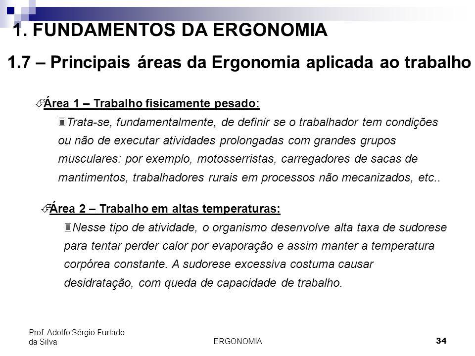 ERGONOMIA 34 Prof. Adolfo Sérgio Furtado da Silva É Área 1 – Trabalho fisicamente pesado: 3Trata-se, fundamentalmente, de definir se o trabalhador tem
