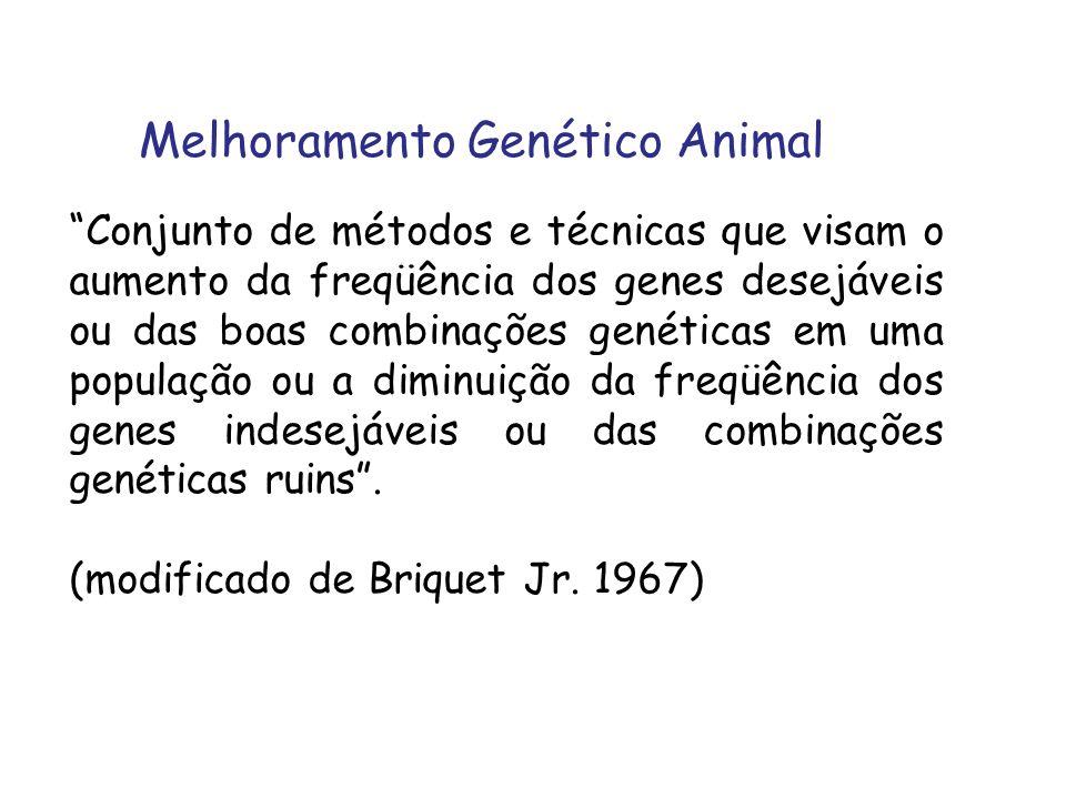Melhoramento Genético Animal Conjunto de métodos e técnicas que visam o aumento da freqüência dos genes desejáveis ou das boas combinações genéticas e