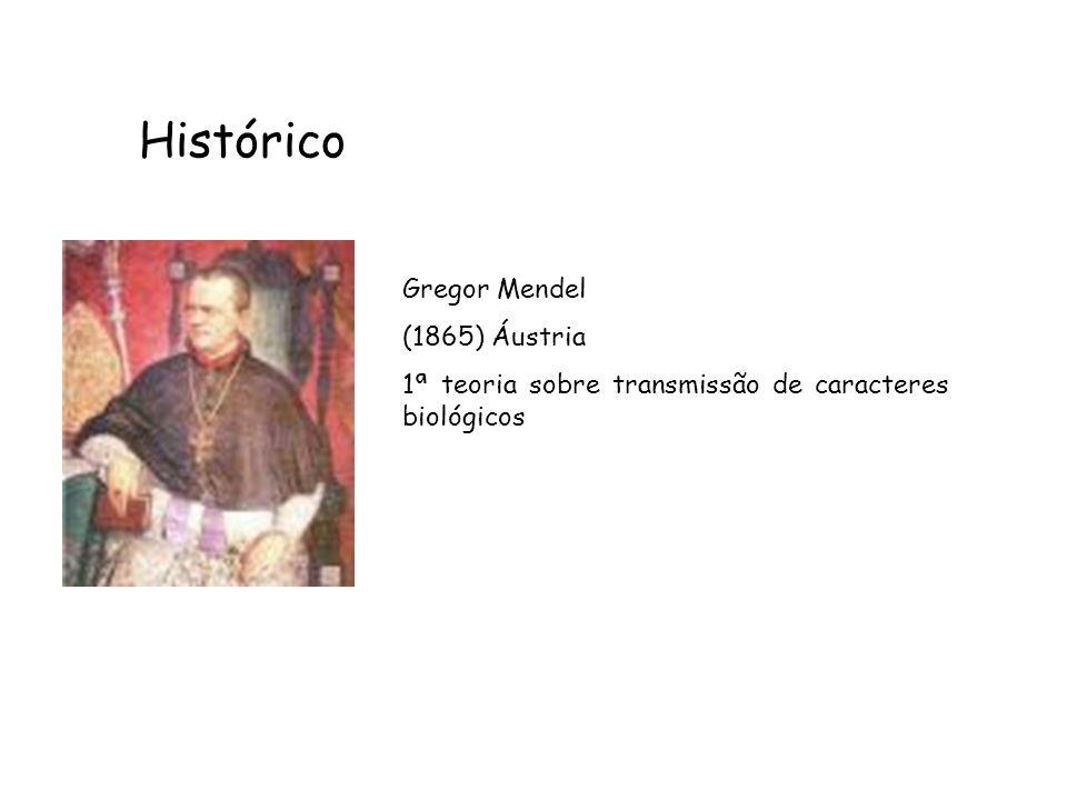 Histórico Gregor Mendel (1865) Áustria 1ª teoria sobre transmissão de caracteres biológicos