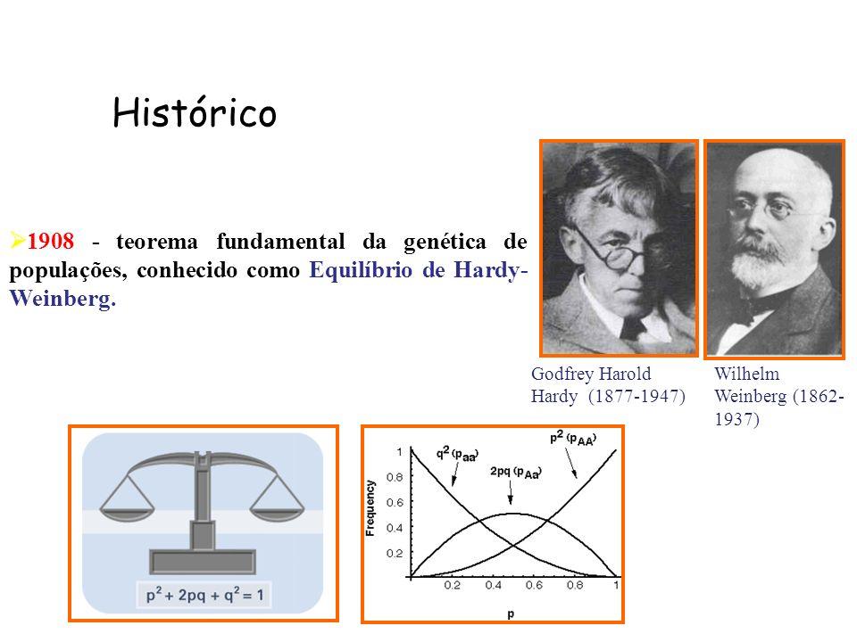 1908 - teorema fundamental da genética de populações, conhecido como Equilíbrio de Hardy- Weinberg. Godfrey Harold Hardy (1877-1947) Wilhelm Weinberg