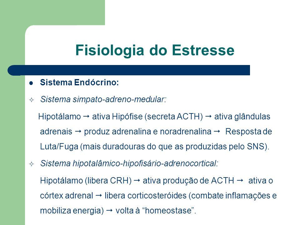 Fisiologia do Estresse Sistema Endócrino: Sistema simpato-adreno-medular: Hipotálamo ativa Hipófise (secreta ACTH) ativa glândulas adrenais produz adr