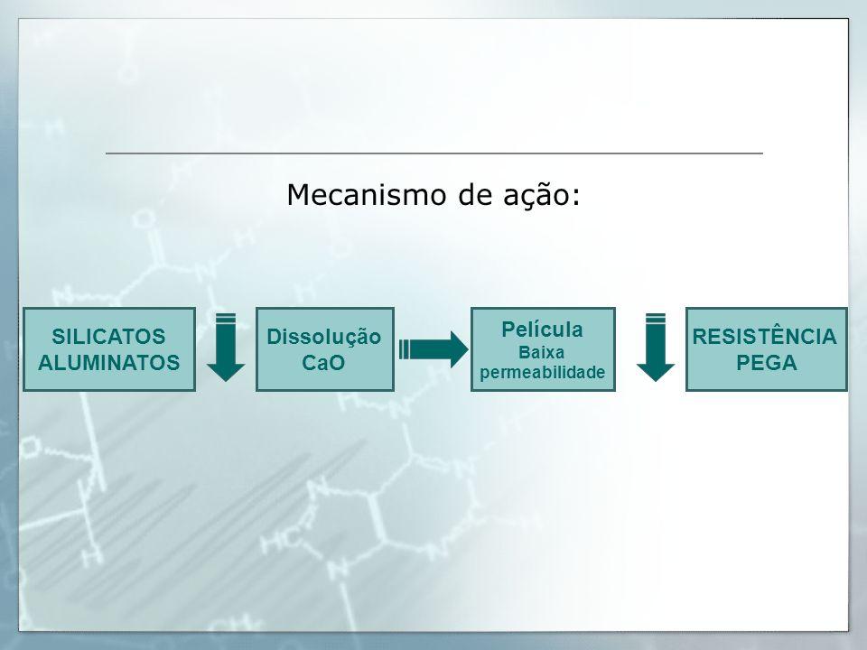 SILICATOS ALUMINATOS Dissolução CaO Película Baixa permeabilidade RESISTÊNCIA PEGA Mecanismo de ação: