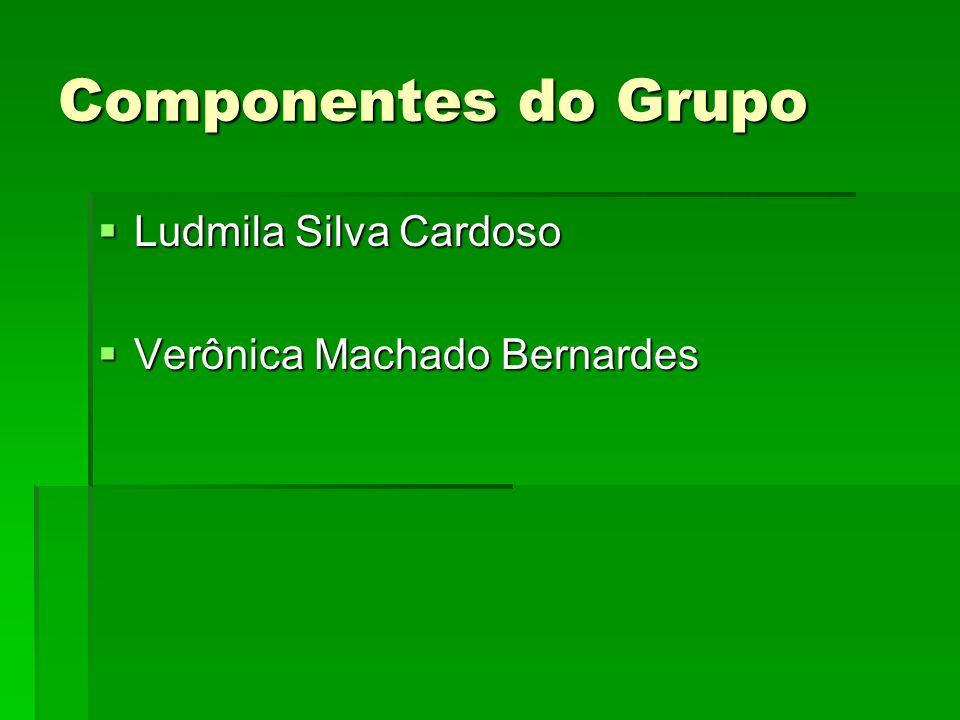 Componentes do Grupo Ludmila Silva Cardoso Ludmila Silva Cardoso Verônica Machado Bernardes Verônica Machado Bernardes
