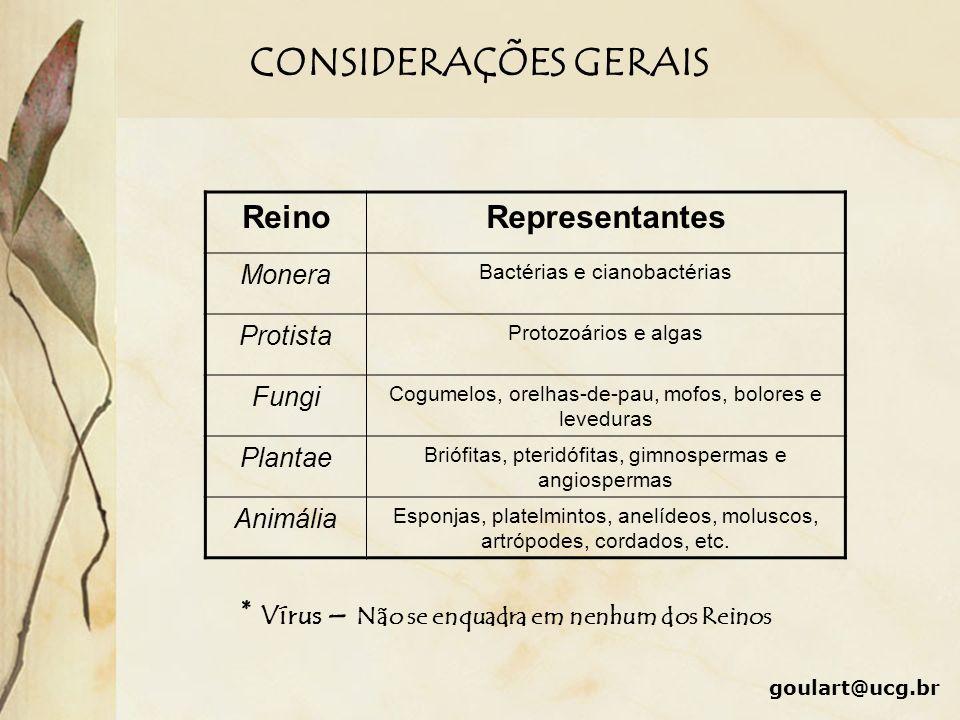 CONSIDERAÇÕES GERAIS ReinoRepresentantes Monera Bactérias e cianobactérias Protista Protozoários e algas Fungi Cogumelos, orelhas-de-pau, mofos, bolor