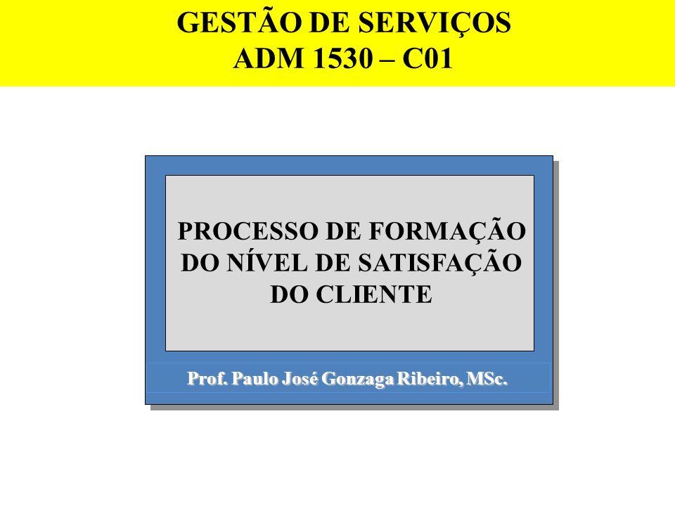 Prof. Paulo José Gonzaga Ribeiro, MSc. PROCESSO DE FORMAÇÃO DO NÍVEL DE SATISFAÇÃO DO CLIENTE GESTÃO DE SERVIÇOS ADM 1530 – C01