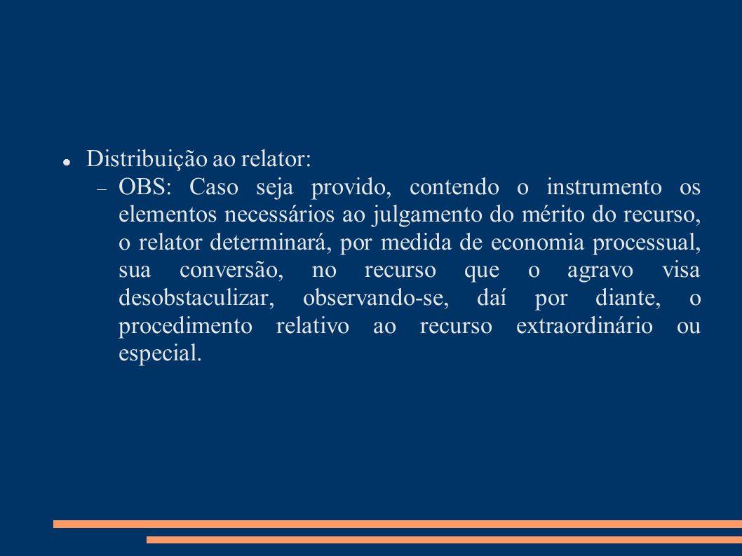 Distribuição ao relator: OBS: Caso seja provido, contendo o instrumento os elementos necessários ao julgamento do mérito do recurso, o relator determi