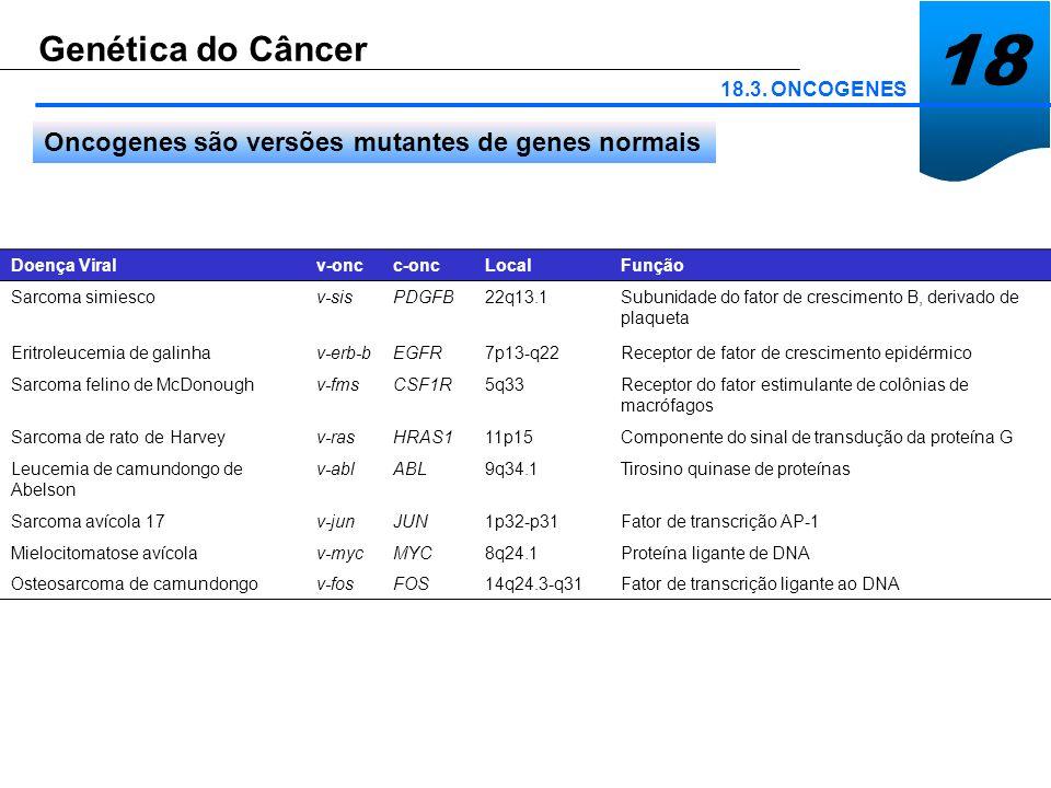 18 Genética do Câncer 18.3. ONCOGENES Oncogenes são versões mutantes de genes normais Doença Viralv-oncc-oncLocalFunção Sarcoma simiescov-sisPDGFB22q1