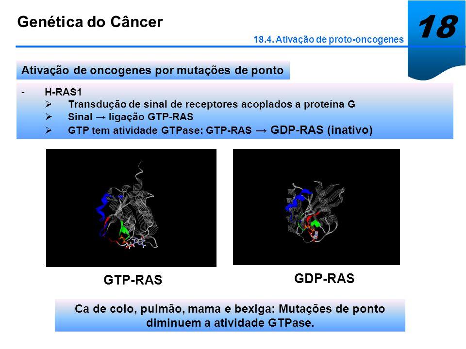 18 Genética do Câncer 18.4. Ativação de proto-oncogenes Ativação de oncogenes por mutações de ponto -H-RAS1 Transdução de sinal de receptores acoplado