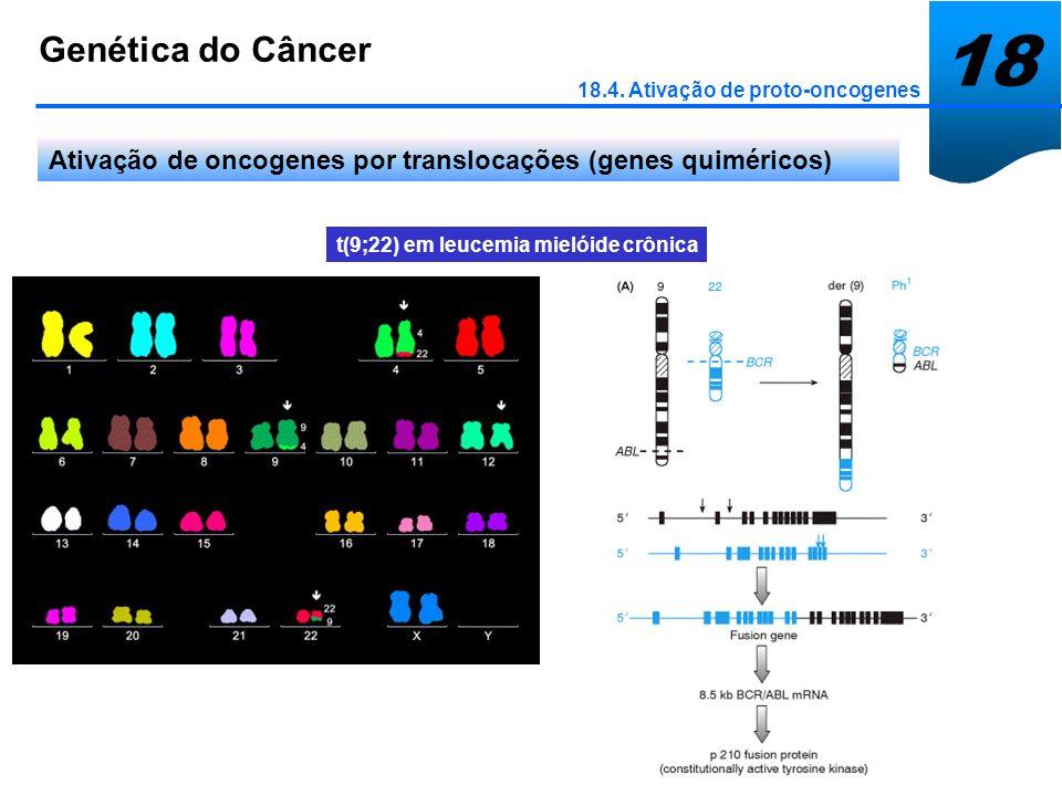 18 Genética do Câncer 18.4. Ativação de proto-oncogenes Ativação de oncogenes por translocações (genes quiméricos) t(9;22) em leucemia mielóide crônic
