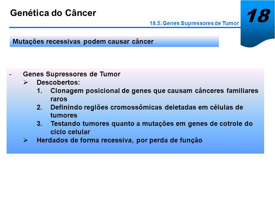 18 Genética do Câncer 18.5. Genes Supressores de Tumor Mutações recessivas podem causar câncer -Genes Supressores de Tumor Descobertos: 1.Clonagem pos
