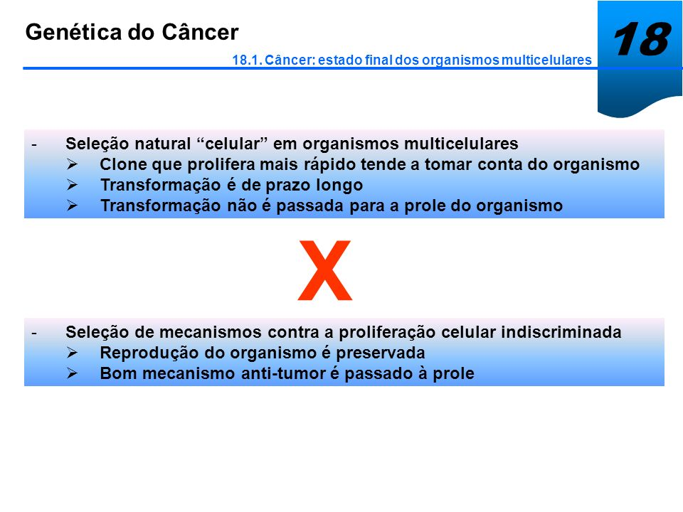 Genética do Câncer 18.1. Câncer: estado final dos organismos multicelulares -Seleção natural celular em organismos multicelulares Clone que prolifera
