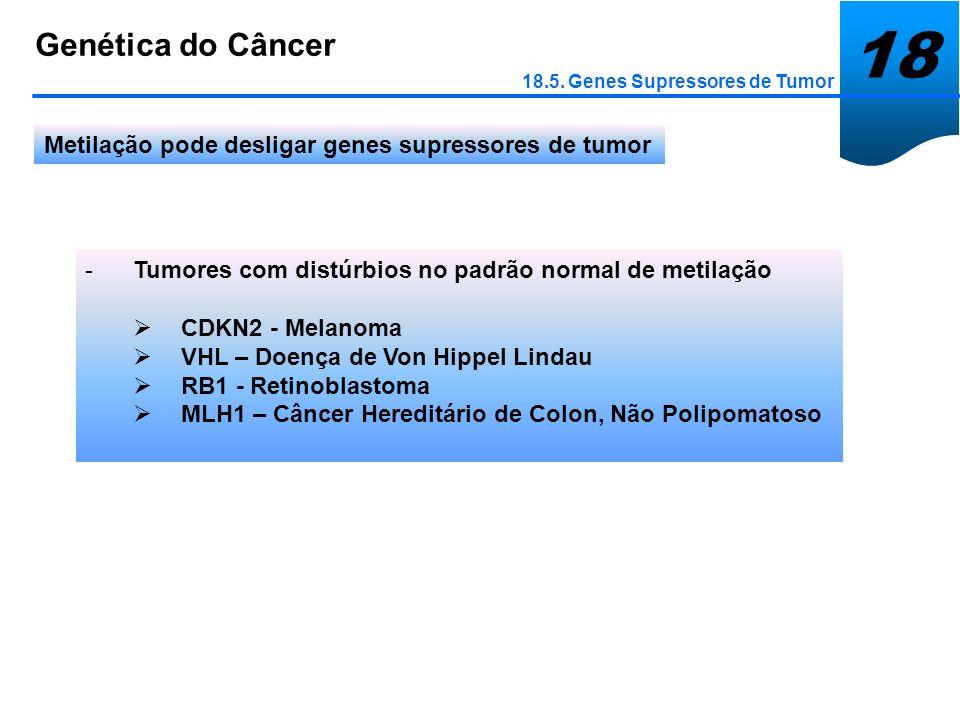 18 Genética do Câncer 18.5. Genes Supressores de Tumor Metilação pode desligar genes supressores de tumor -Tumores com distúrbios no padrão normal de