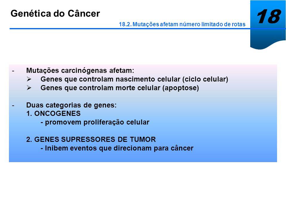 18 Genética do Câncer 18.2. Mutações afetam número limitado de rotas -Mutações carcinógenas afetam: Genes que controlam nascimento celular (ciclo celu
