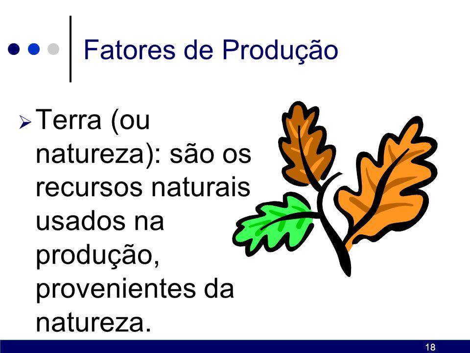 18 Fatores de Produção Terra (ou natureza): são os recursos naturais usados na produção, provenientes da natureza.